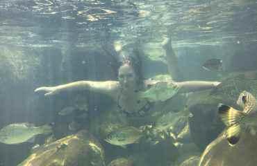 amanda underwater fish zoe 1149x960