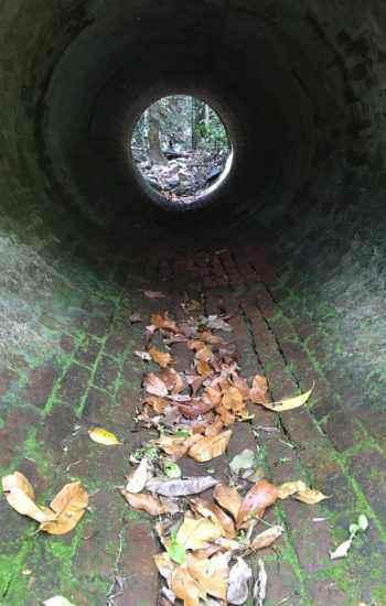 tunnel portrait